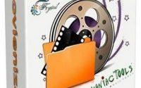 movienizer crack
